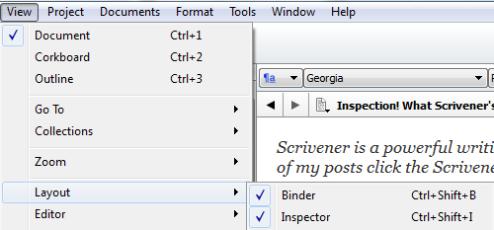 Scirv Turn on Inspector